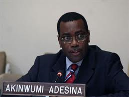 Nigeria's Agriculture Minister, Adesina, emerges Forbes Africa Person of the Year