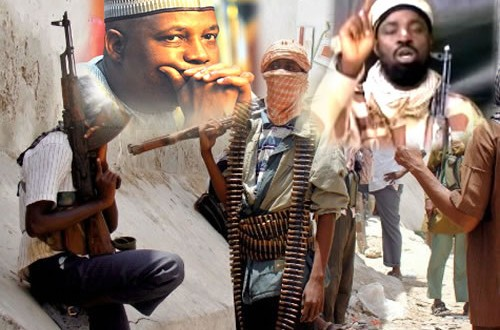 Boko Haram grounds Borno •Schools, clinics shut, access to settlements impossible —SSG