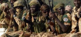 Chad joins Cameroun in fight against Boko Haram