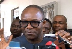 Subsidy Removal, Answer To Fuel Scarcity – FG