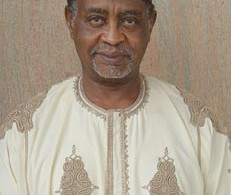 INTERVIEW: Corrupt elements, incompetent aides, saboteurs join forces to hinder Buhari — Bashir Tofa