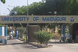 Suicide Bombers Hit University Of Maiduguri Again